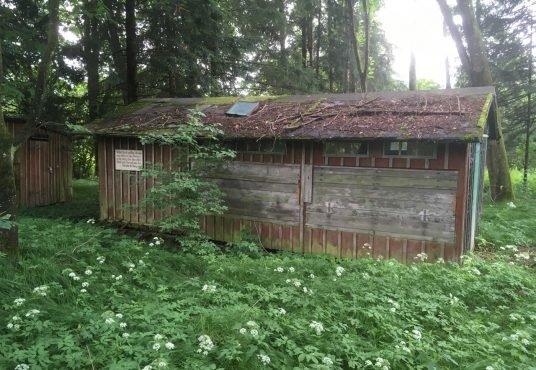 Waldgrundstück, ehem. Bienenstand